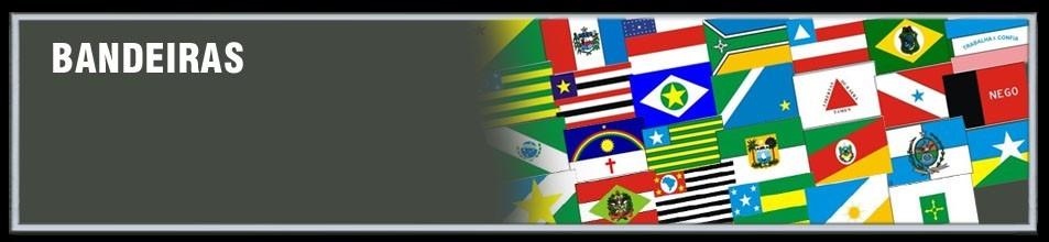 Emborrachados Militares de Bandeiras dos Estados e do Brasil